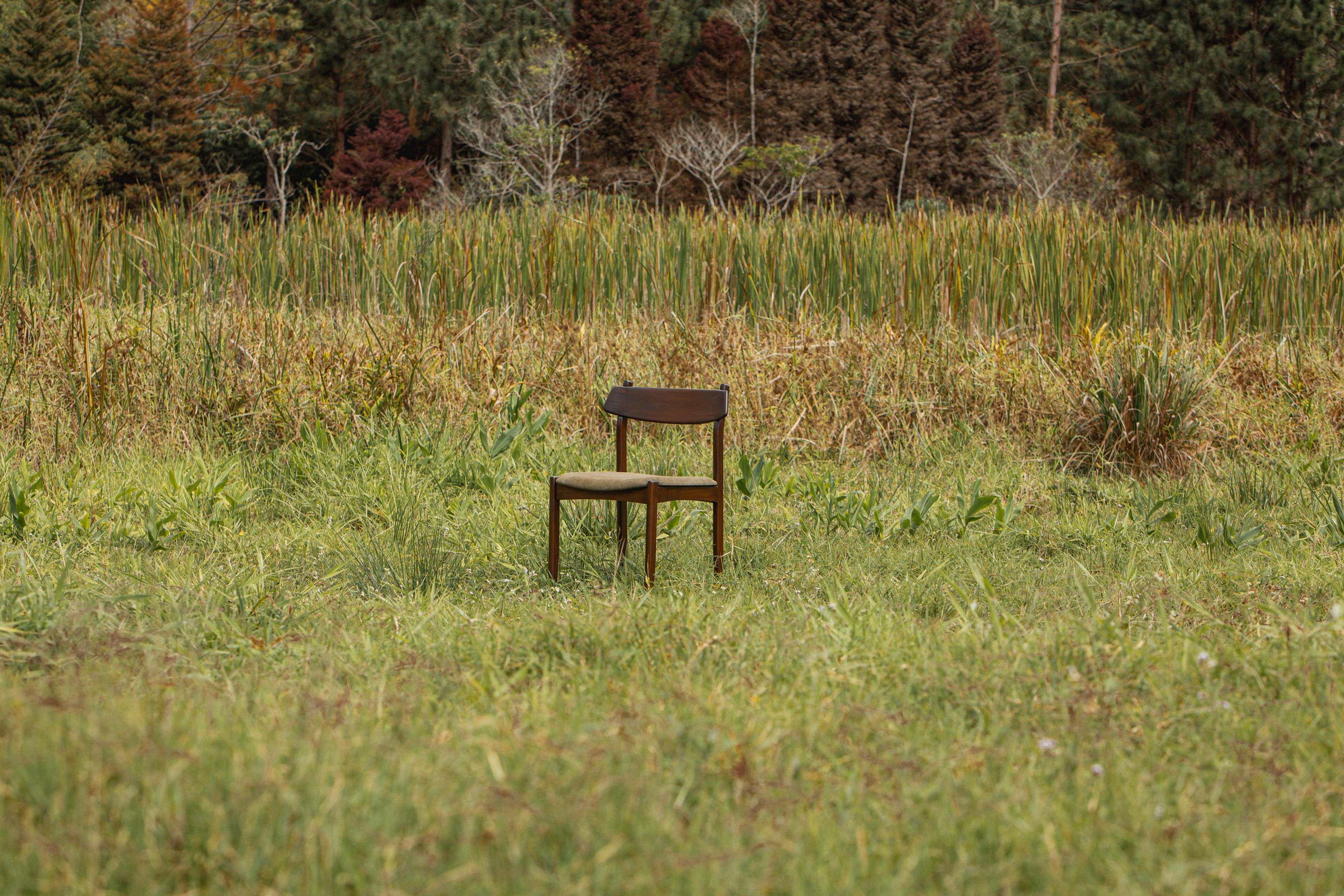 Chair Nikolas